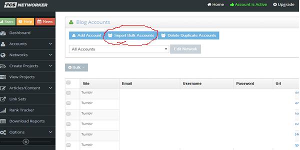 Bulk Upload Web 2 Accounts